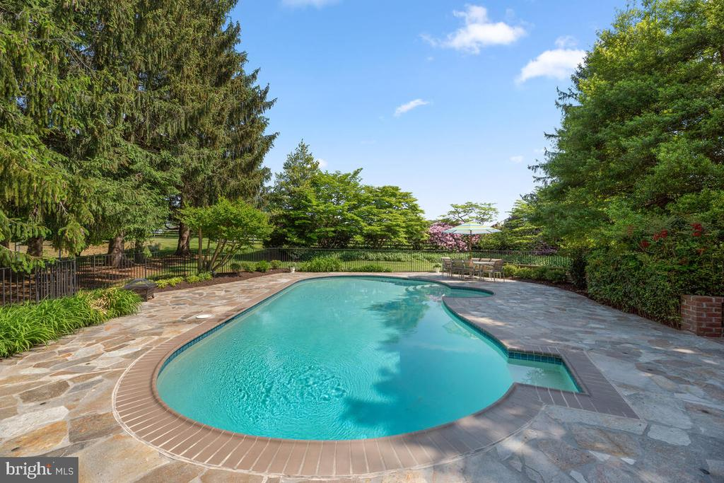 Stone patio surrounding pool - 12645 OLD FREDERICK RD, SYKESVILLE