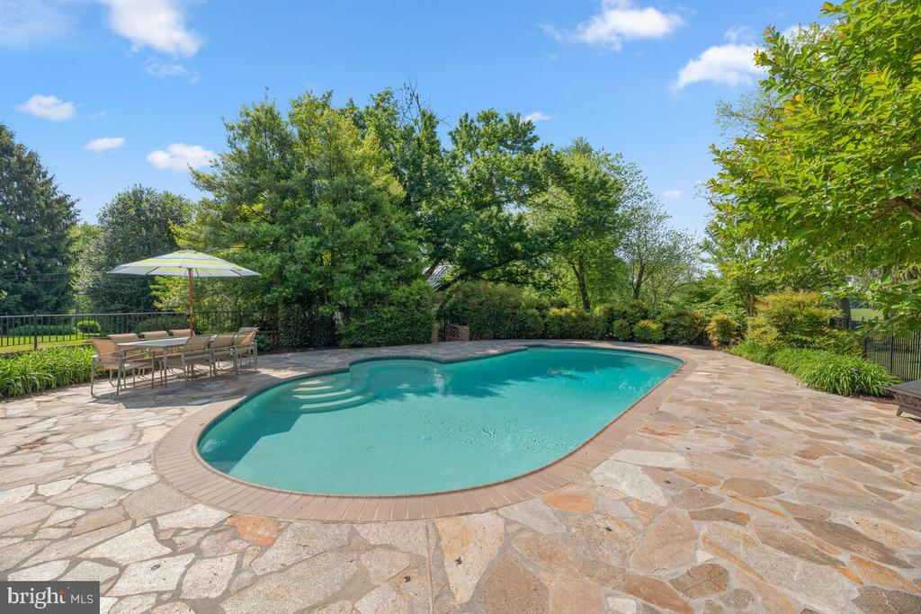 9ft deep saltwater pool - 12645 OLD FREDERICK RD, SYKESVILLE