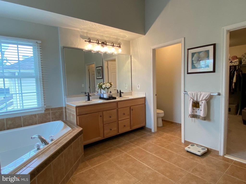 Luxurious Master Bath  with walk-in closet - 20343 FISHERS ISLAND CT, ASHBURN