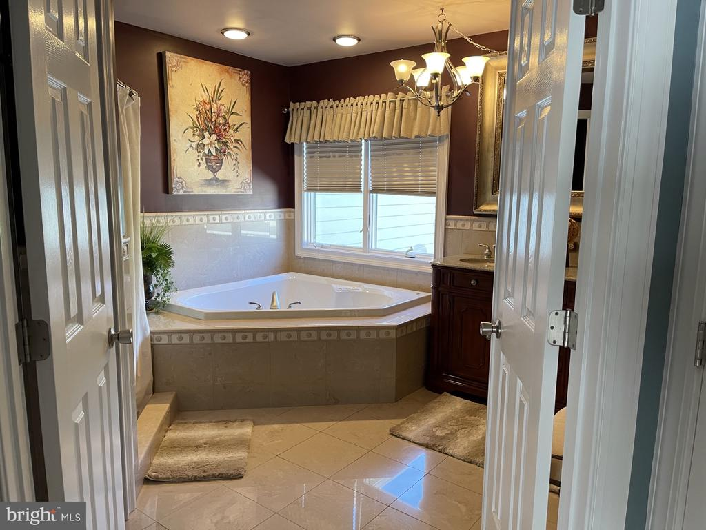 master bedroom - 42215 BIG SPRINGS CT, LEESBURG