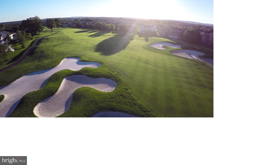 Golfing at Belmont - 20343 FISHERS ISLAND CT, ASHBURN