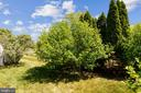 Backs To Trees - 44484 MALTESE FALCON SQ, ASHBURN