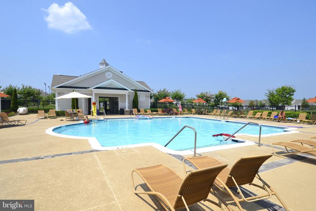 Potomac Green Outdoor Pool - 44484 MALTESE FALCON SQ, ASHBURN