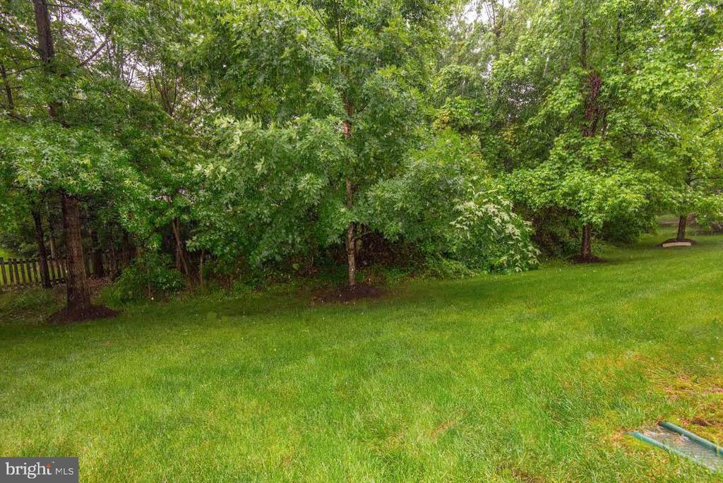 Home backs to woods - 42918 PARK BROOKE CT, BROADLANDS