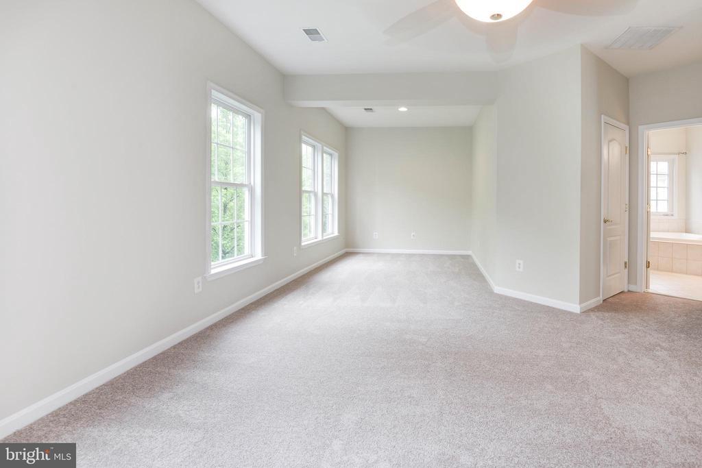 Owners suite; sitting area - 42918 PARK BROOKE CT, BROADLANDS