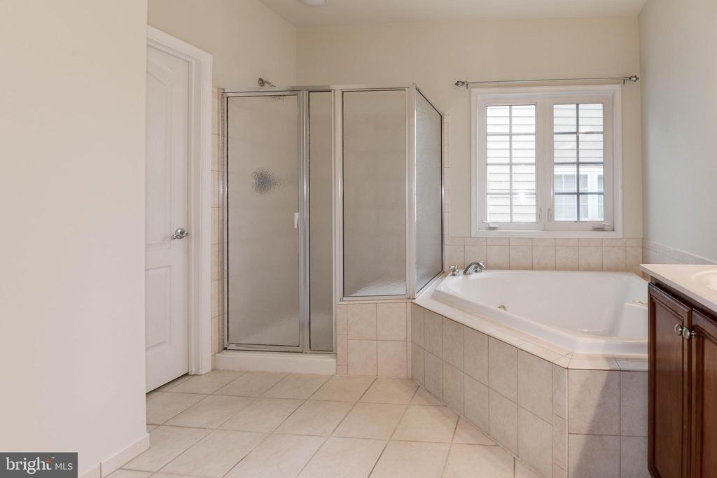 Shower area - 42918 PARK BROOKE CT, BROADLANDS