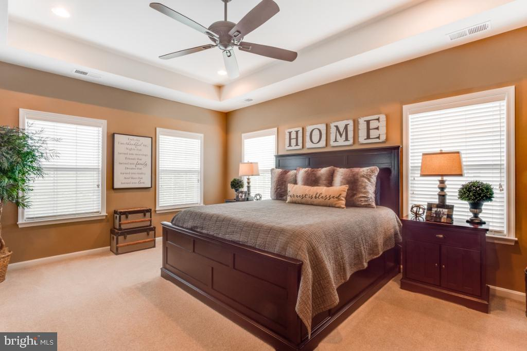 Owners Luxury Suite with Tray Ceiling - 42063 MIDDLEHAM CT, ASHBURN