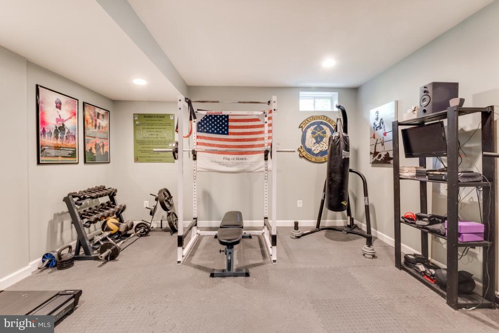 Fitness or Bonus Room on the Lower Level - 42063 MIDDLEHAM CT, ASHBURN