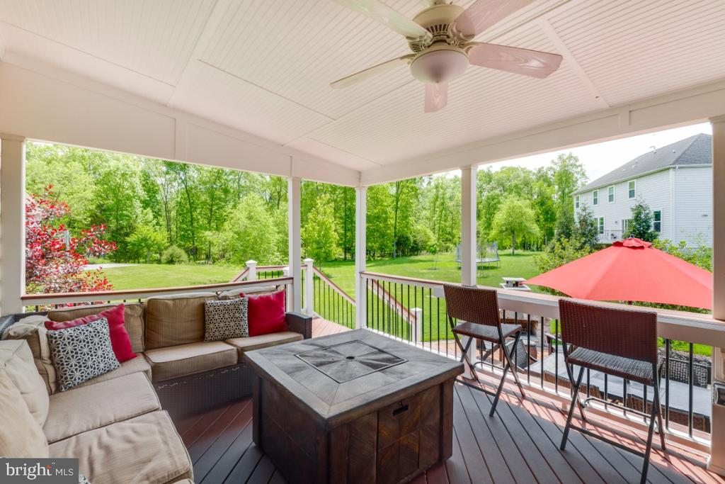 Amazing Covered Deck / Built-in Bar Top - 42063 MIDDLEHAM CT, ASHBURN