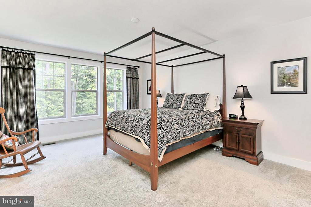 Upper lvl primary suite with gorgeous window views - 9552 KATELYN ZINN PL, BURKE
