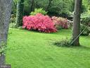 Spring View - 6551 DEARBORN DR, FALLS CHURCH