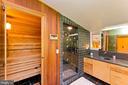 Primary Bathroom with Sauna - 246 SONGBIRD LN, WINCHESTER