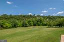 Yard down to the River - 721 BATTLEFIELD BLUFF DR, NEW MARKET