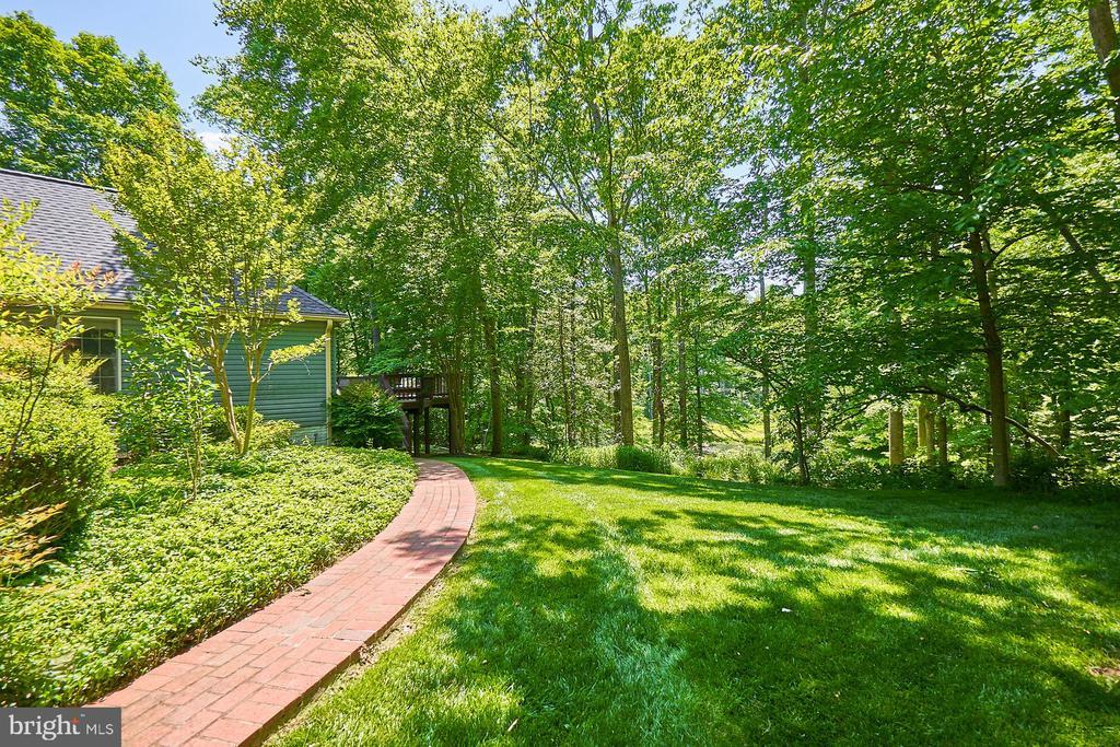 Mature landscaping - 10824 HENDERSON RD, FAIRFAX STATION