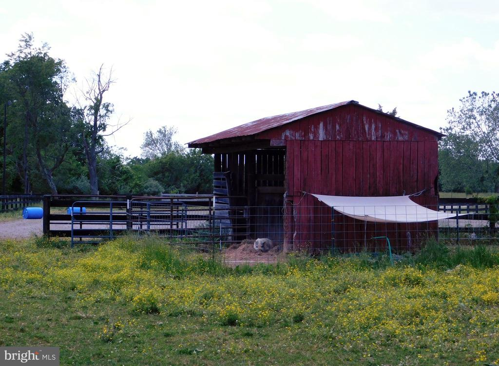 Shed in Riding Arena Area. Pigs currently occupy - 420 RUSSELL RD, BERRYVILLE