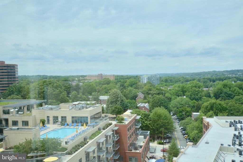 Look at the neighbors pool!! - 2001 15TH ST N #1203, ARLINGTON