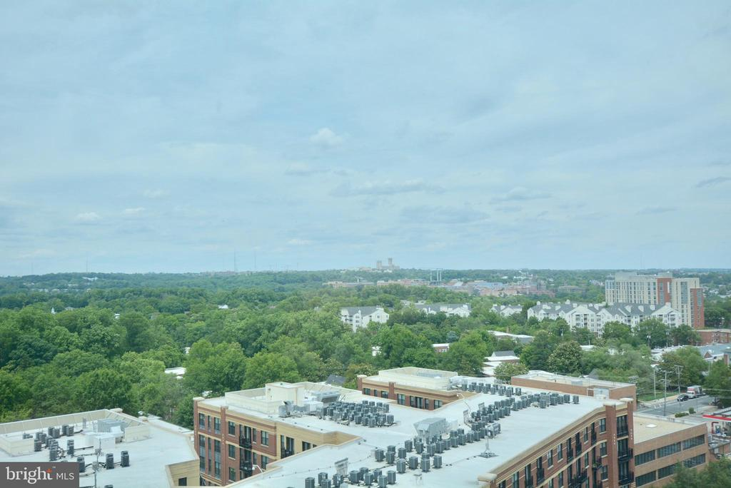 What more is there to say? - 2001 15TH ST N #1203, ARLINGTON
