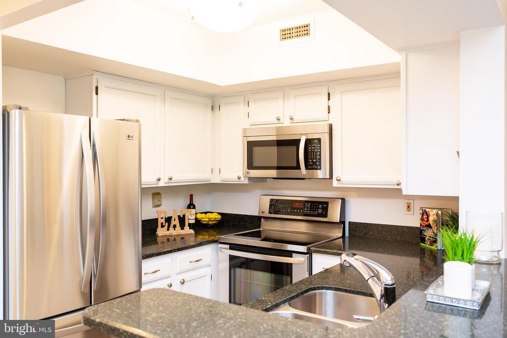 Quartz countertops and stainless steel appliances - 2400 CLARENDON BLVD #301, ARLINGTON
