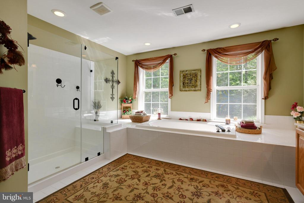 Soaking Tub and Separate Shower - 6191 TREYWOOD LN, MANASSAS