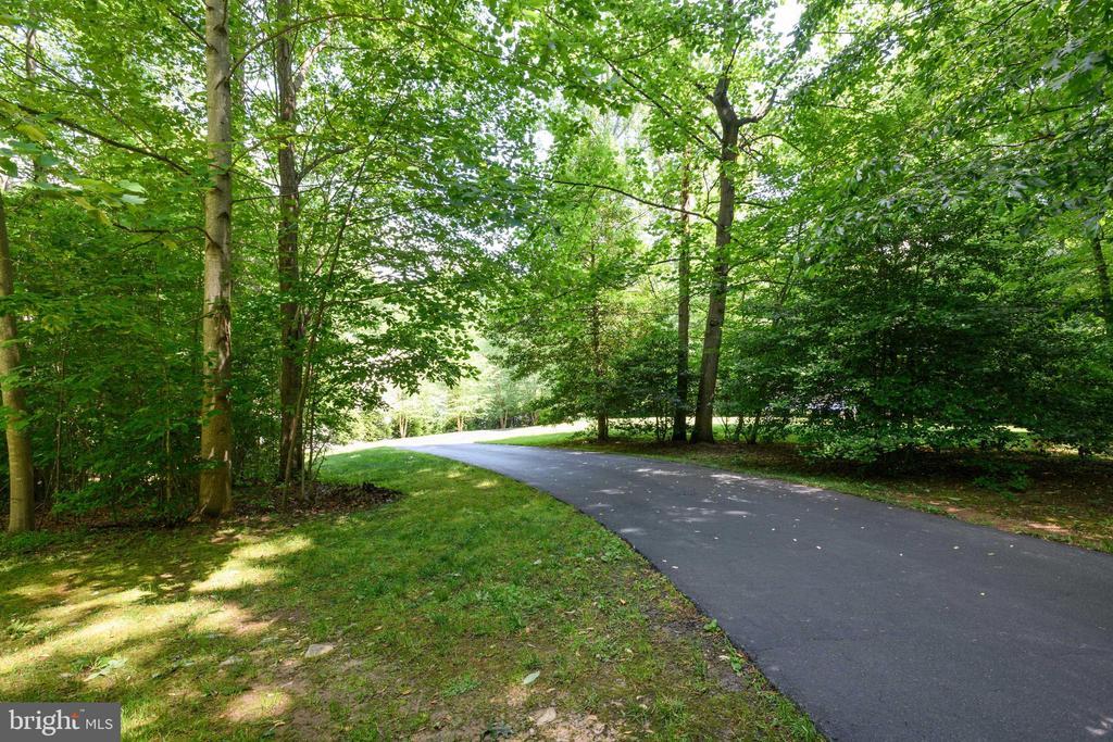 Wooded Driveway - 6191 TREYWOOD LN, MANASSAS