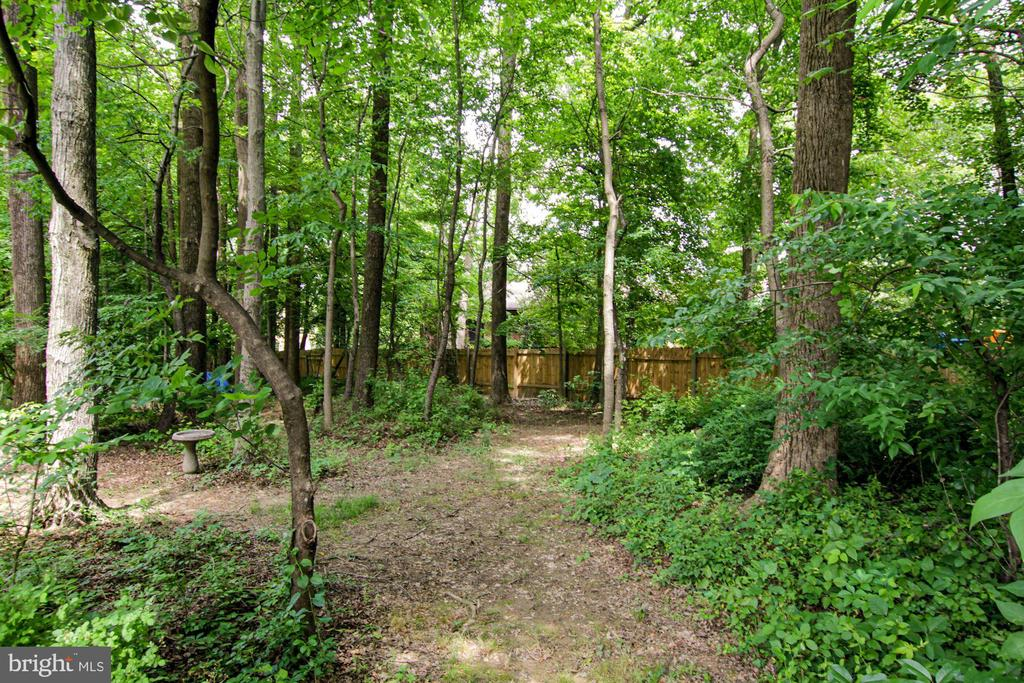 the conservation easement - 1114 HEARTFIELDS DR, SILVER SPRING
