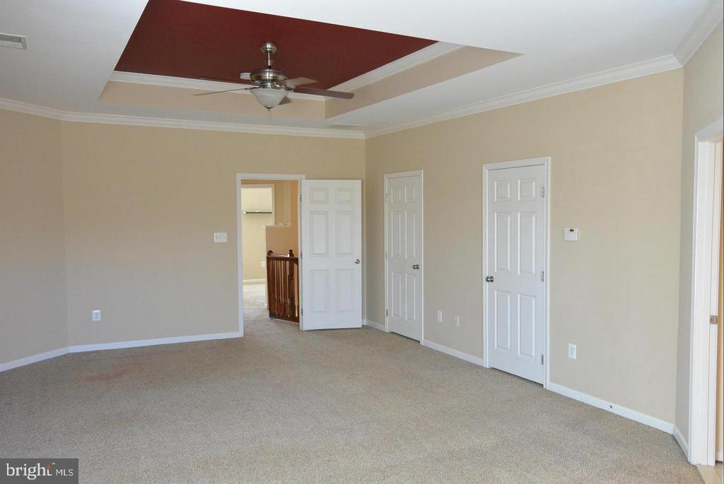 Tray ceilings in the primary bedroom - 38 HUNTING CREEK LN, STAFFORD