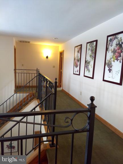 Upstairs Hallway - 7670 TALBOT RUN RD, MOUNT AIRY