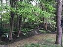 Gorgeous backyard! - 4411 FALLEN OAK DR, CHANTILLY