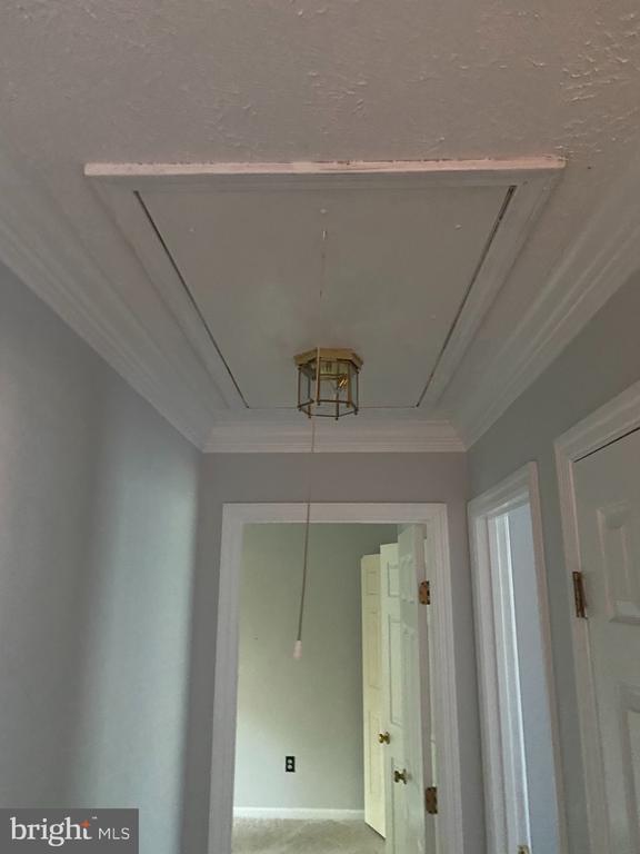 Hallway upstairs - 53 EUSTACE RD, STAFFORD