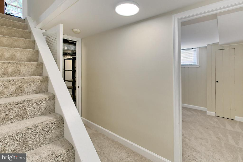 Stairway to the Lower Level - 2029 S OAKLAND ST, ARLINGTON
