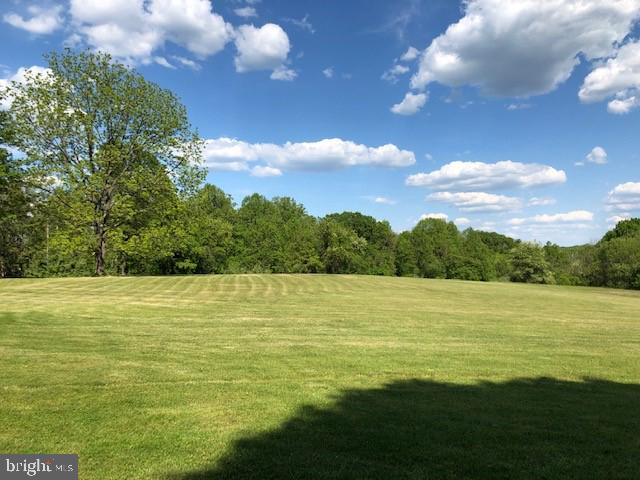 south facing front yard - 20707 ST LOUIS RD, PURCELLVILLE