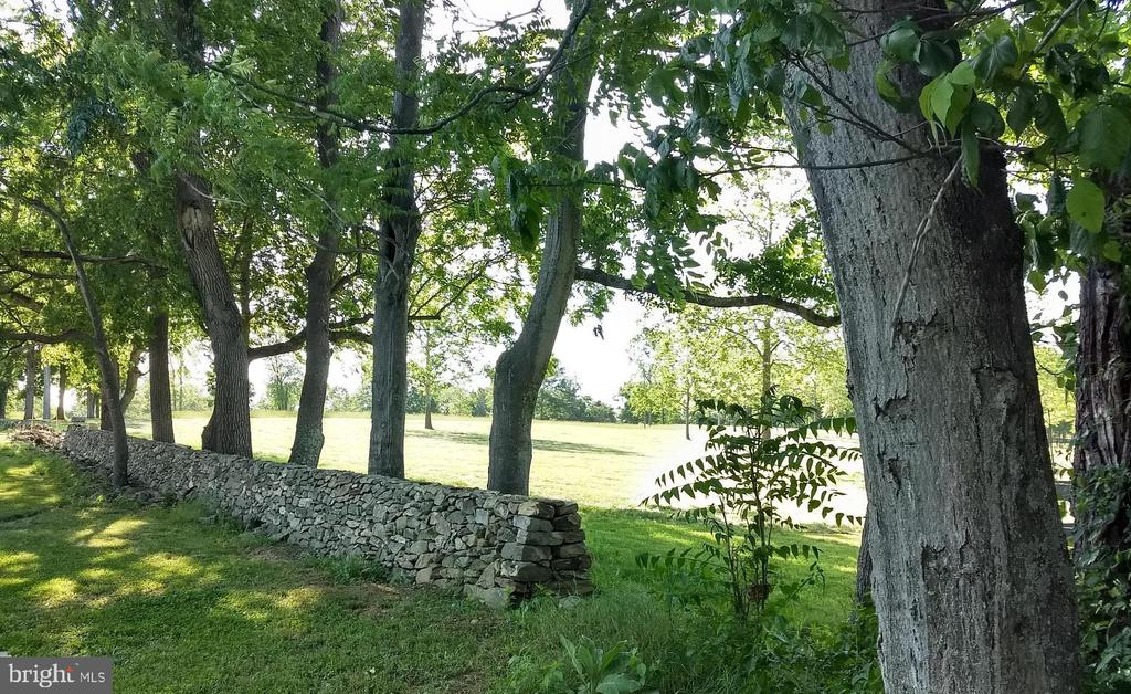 beautiful stone wall - 20707 ST LOUIS RD, PURCELLVILLE