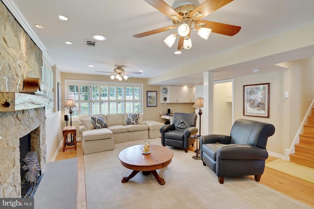 Lower Level Family Room - 10910 BELMONT BLVD, LORTON