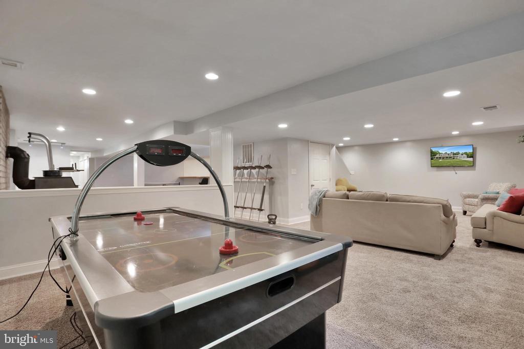 Recreation RoomLower Level Family Room - 11302 GAMBRILL PARK RD, FREDERICK