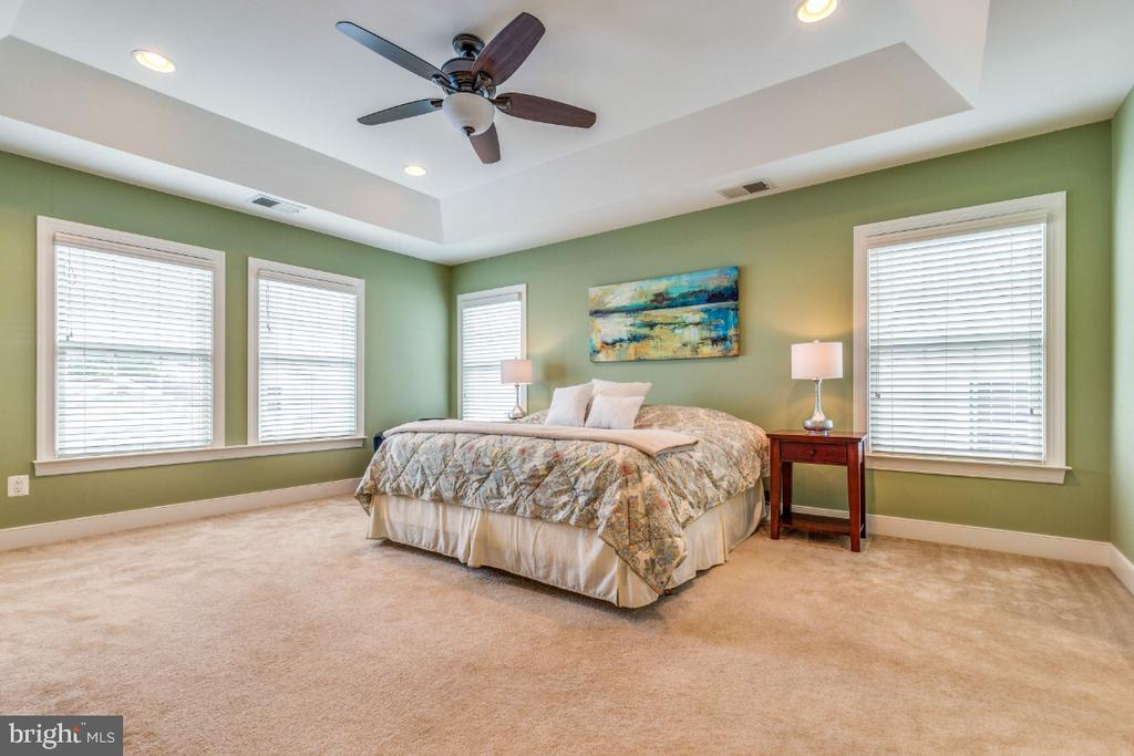 Owners Suite with Tray Ceiling - 41873 REDGATE WAY, ASHBURN