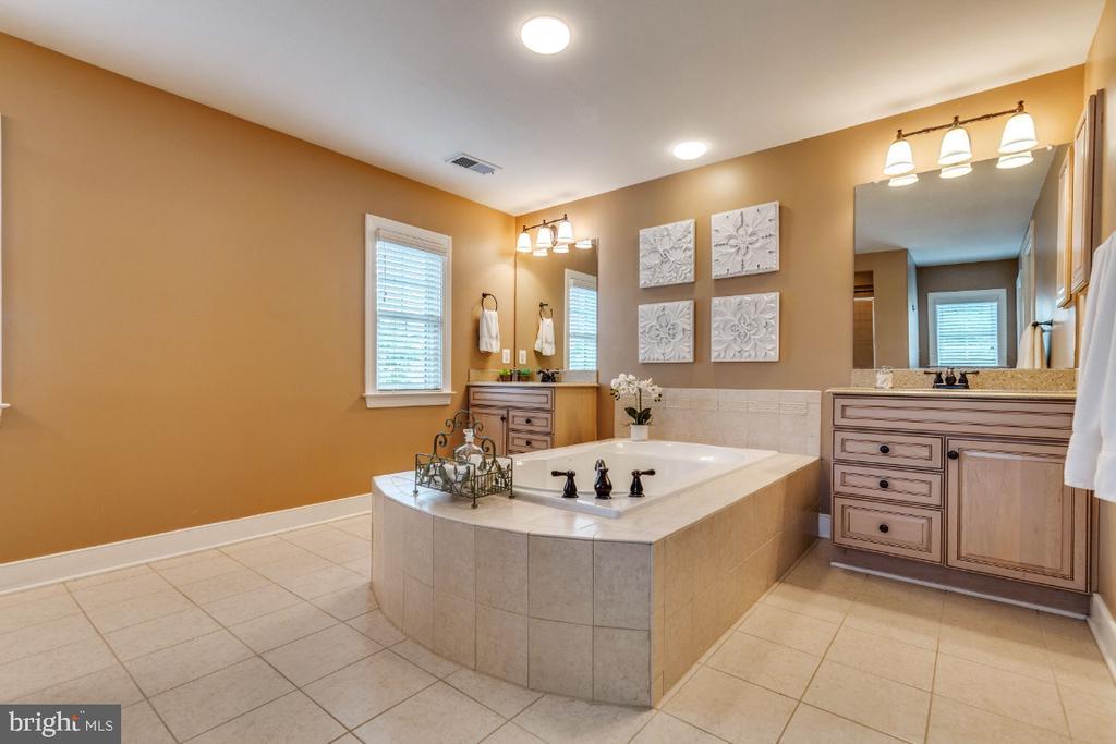 Owners Suite Luxury Bathroom - 41873 REDGATE WAY, ASHBURN