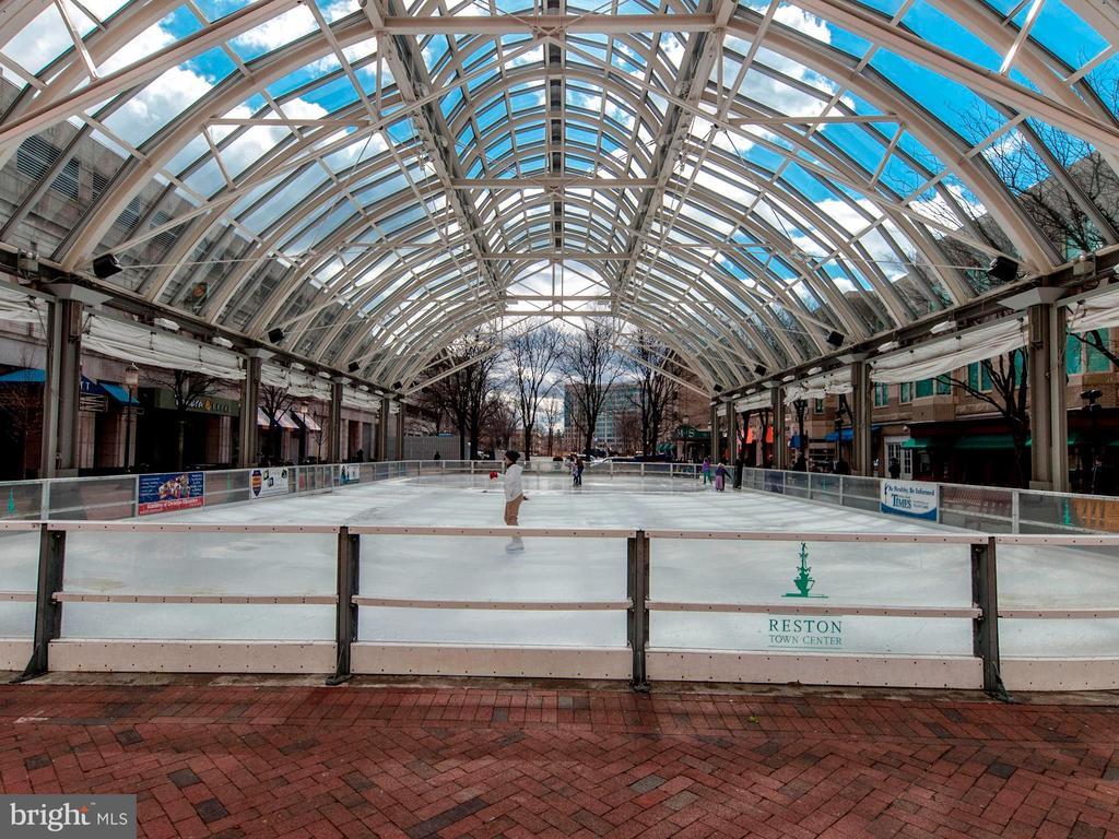 Ice Skating Rink - 12090 CHANCERY STATION CIR, RESTON