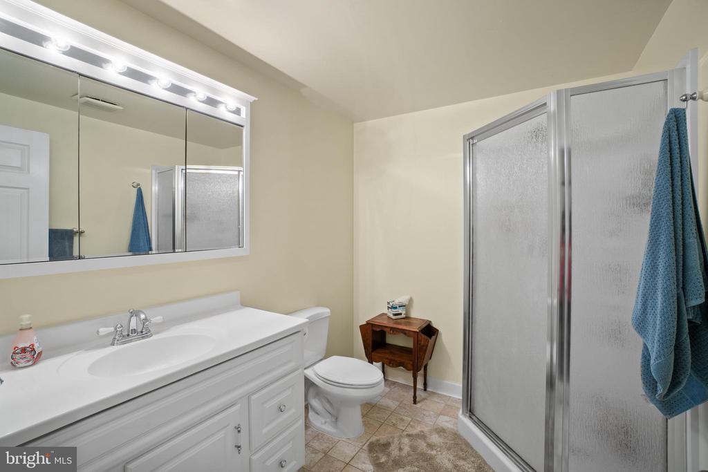 Lower Level Full Bath - 17318 ARROWOOD PL, ROUND HILL