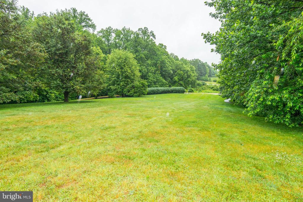 Open Green Space Next to House - 1211 HERITAGE COMMONS CT, RESTON
