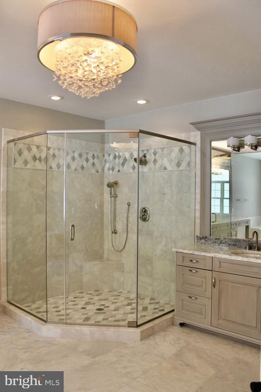 Luxurious 2-Person Shower. - 10603 VALE RD, OAKTON