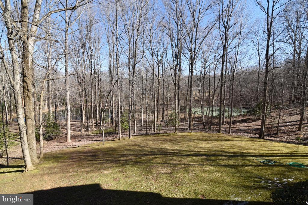 View of Adjacent Common Area Pond & Tennis - 1101 PEPPERTREE DR, GREAT FALLS