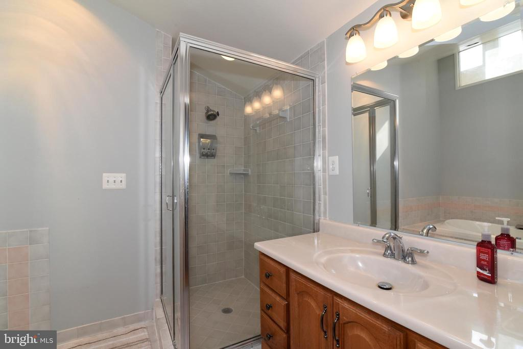Primary Bathroom Vanity and Shower - 1101 PEPPERTREE DR, GREAT FALLS