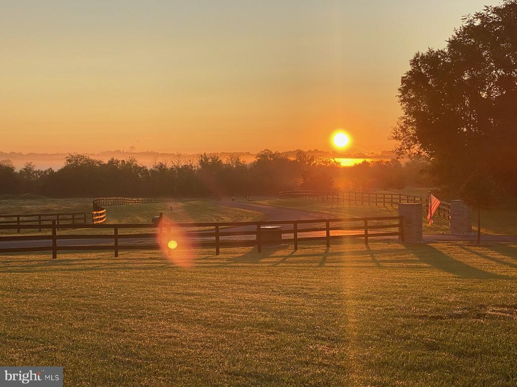 sunrise out front of home - 42835 TRAVELERS RUN LN, LEESBURG