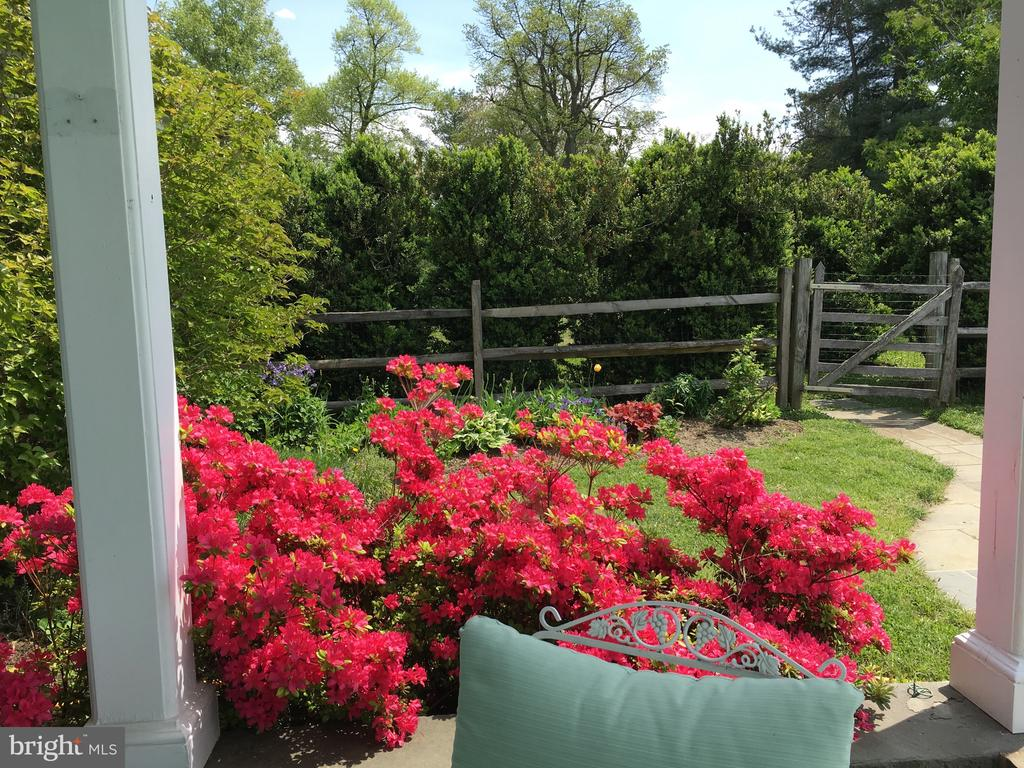 Mature gardens surround the house and pool - 21943 ST LOUIS RD, MIDDLEBURG