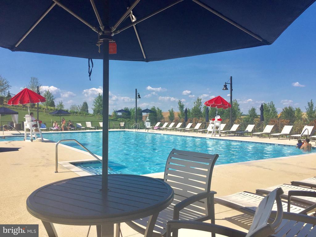 The social pool - 17559 SPRING CRESS DR, DUMFRIES