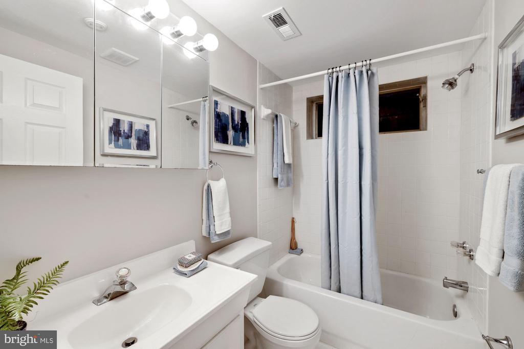 Lower level bath - 3 SPRINGER, BETHESDA