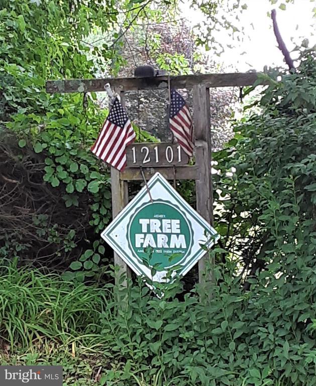 �18.9 forest acres, 1.64 residential acres - 12101 FOUNTAIN DR, CLARKSBURG