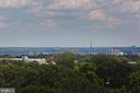 Community Rooftop View - 1021 N GARFIELD ST #242, ARLINGTON