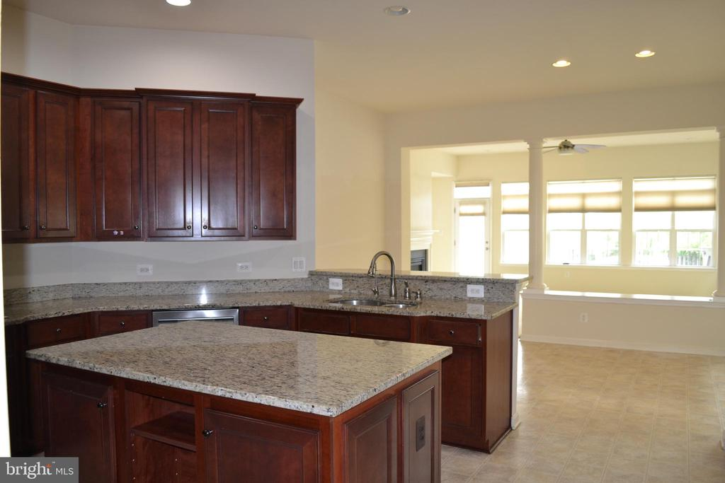 Middle Island - 24104 STONE SPRINGS BLVD, STERLING