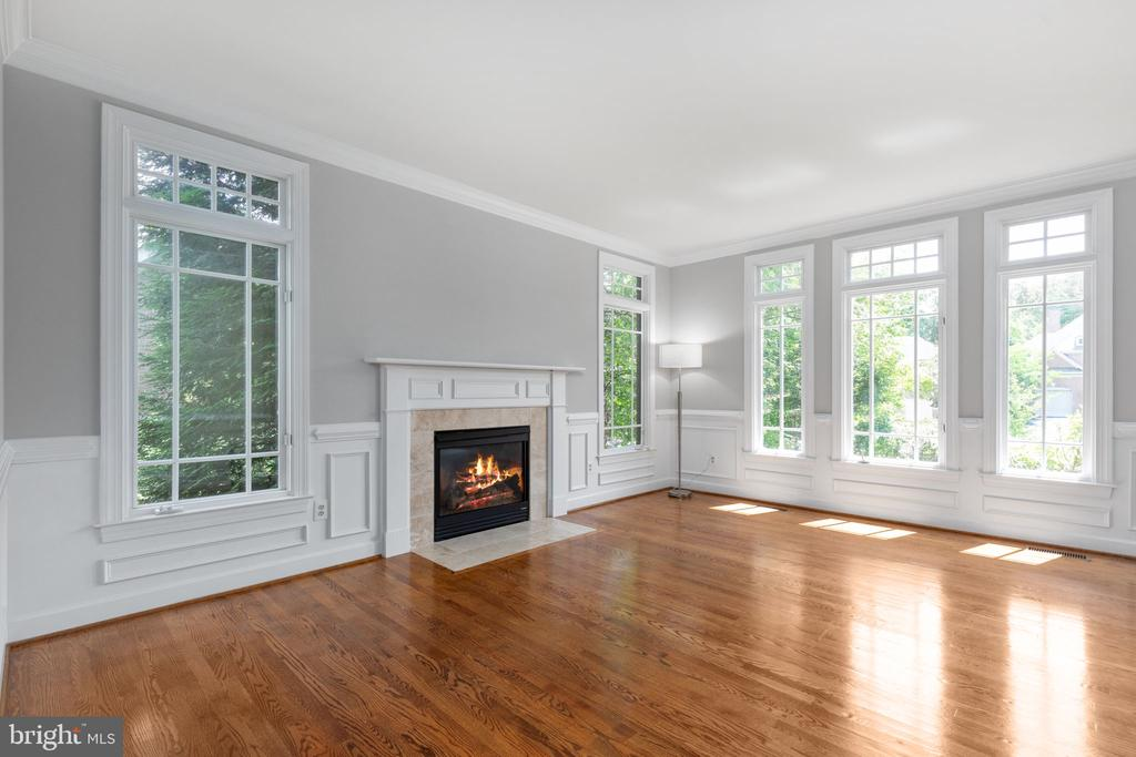 Living Room with fire place - 20581 MYERS PL, LEESBURG